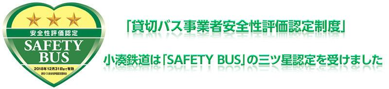 safetybus-3s.jpgのサムネイル画像のサムネイル画像
